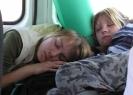 Свернулись – и спят